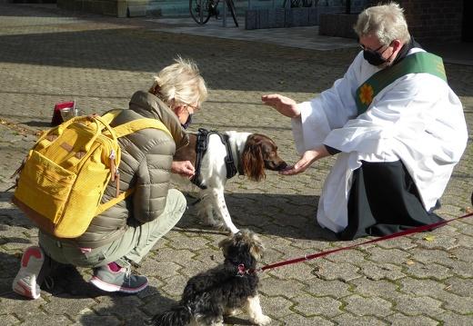 Tiersegnung auf dem Kohlbrink - 10.10.2020